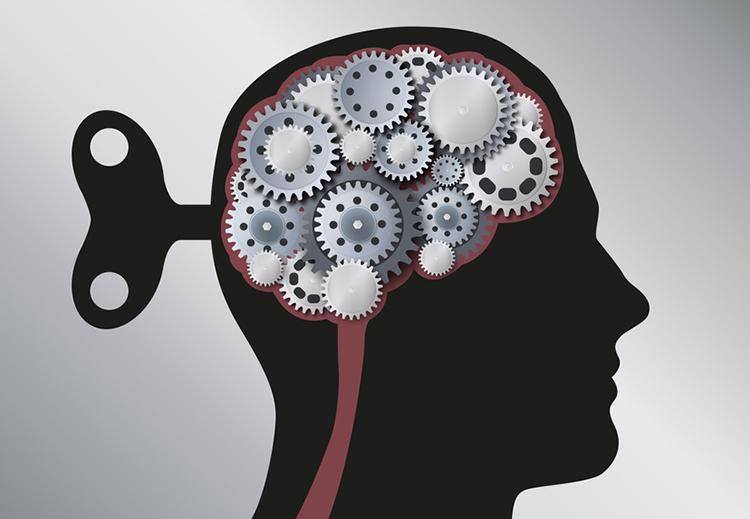 Cerveau - Engrenages Cle